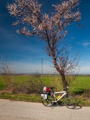 Primăvara la sud de Dunăre