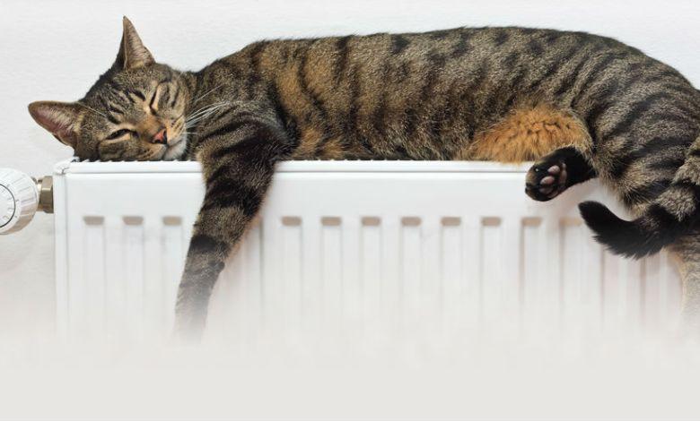 Photo of De ce nu-mi place încălzirea centralizată