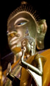 Buddha statues in a temple in Luang Prabang
