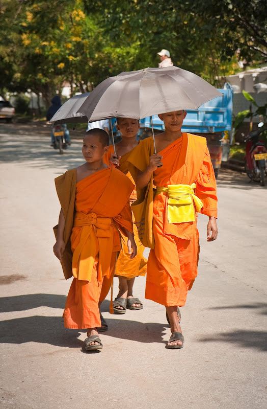 young Buddhist monks on a hot day in Luang Prabang
