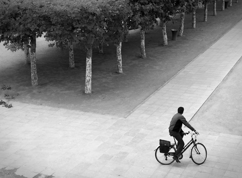 the bicycle obsession