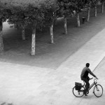 <b>the bicycle obsession</b>