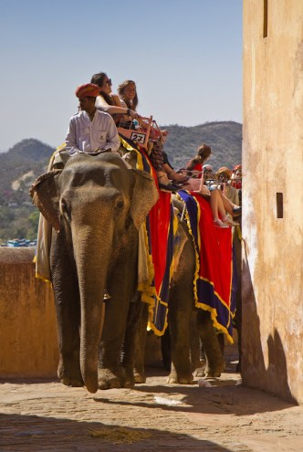 elephant carnying tourists to Amber Fort