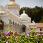 <b>India - photos from Goa</b>