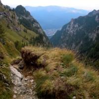 Valea Bucsoiului