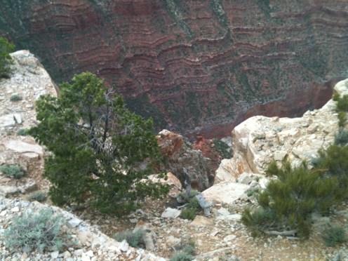 Grand Canyon - 22