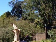 Melbourne 2014 - 106