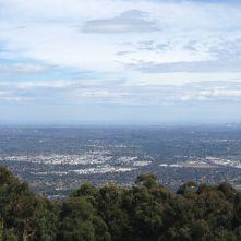 Melbourne 2014 - 204