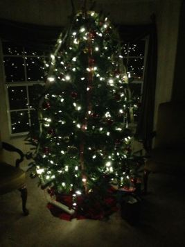 Christmas Week 2014 - 15