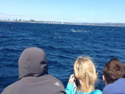 Gold Coast 2015 - 417 of 608