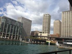 Sydney 2015 - 36 of 134