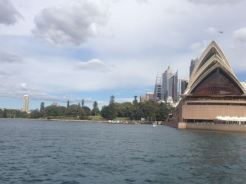 Sydney 2015 - 50 of 134