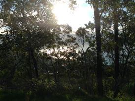 Victoria 2015 - 74 of 148