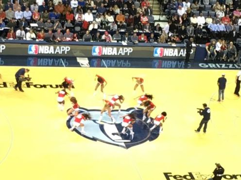 Grizzlies & Spurs 2015 - 5 of 7
