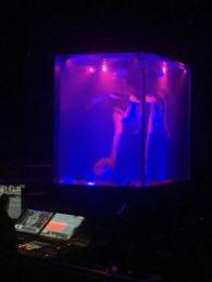 Cirque Sep7imo Dia - 5