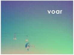 Voar (2006)