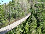 Un dels ponts penjats