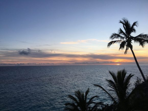 Photo of Sunset and Palm Trees