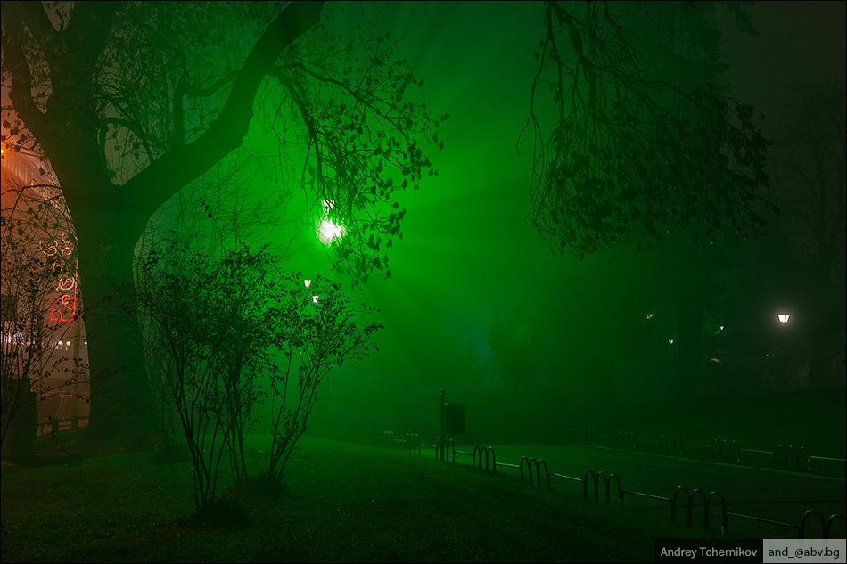 Sofia evening №3