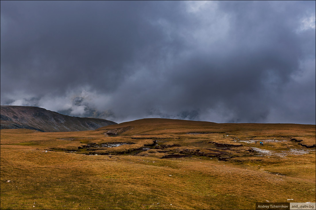 Transalpina mountains.