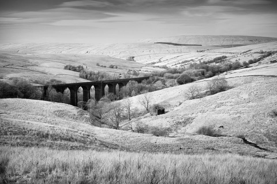 6 Treescape Denthead Viaduct