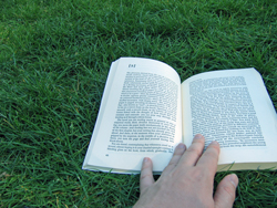Reading 'If on a winter's night a traveler' by Italo Calvino in Central Park, April 2009