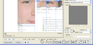 SAVE FOR WEB & DEVICES_The window presented when exporting images from Photoshop.