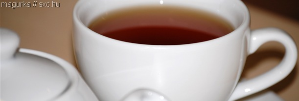 NICE CUP OF TEA_I really like this photo of a cup of tea, by user magurka on the stock.xchng.