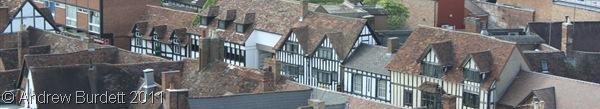 A MOCKING BIRD_A bird's-eye view of some of the Tudor/mock-Tudor houses.