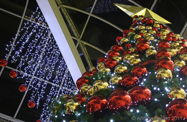 STAR ATTRACTION_The giant Christmas tree in Nicholson's Walk.