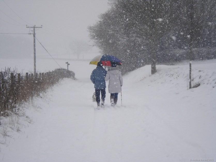 A couple, with a dog, walking through Maidenhead.
