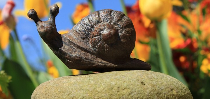 A model snail on the patio wall.