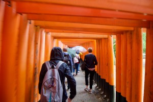 Orange Torii Gates
