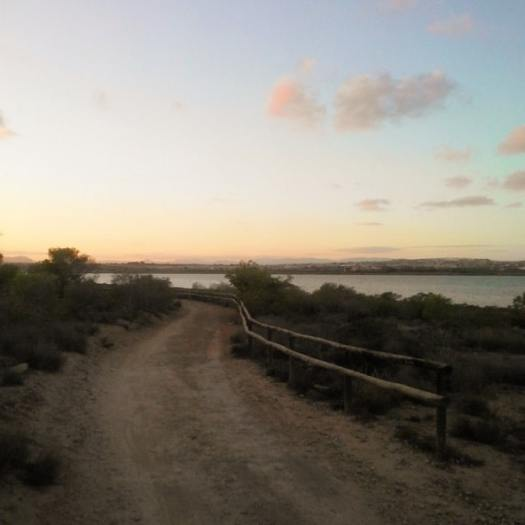 One of the trails at sunset time