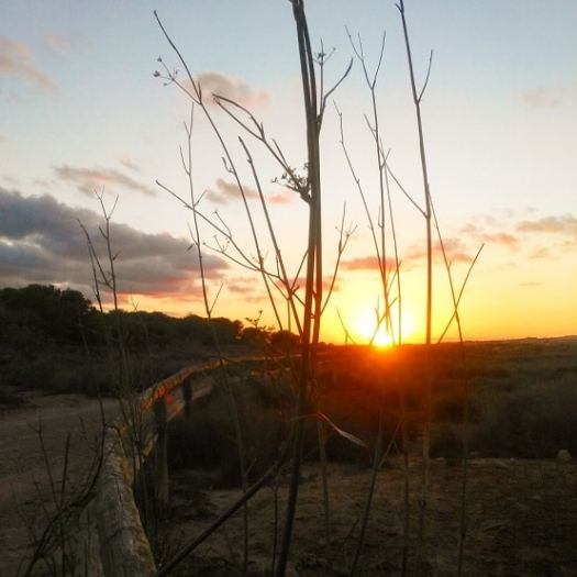 Sunset over a hiking trail near the Laguna de La Mata