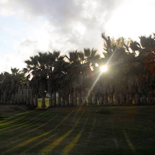Sunset over the driving range, Villamartin Golf Club