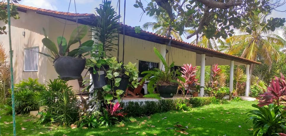 Snapshots of Missionary Life: Itacyara, How Does Your Garden Grow? – and Other Odds and Ends