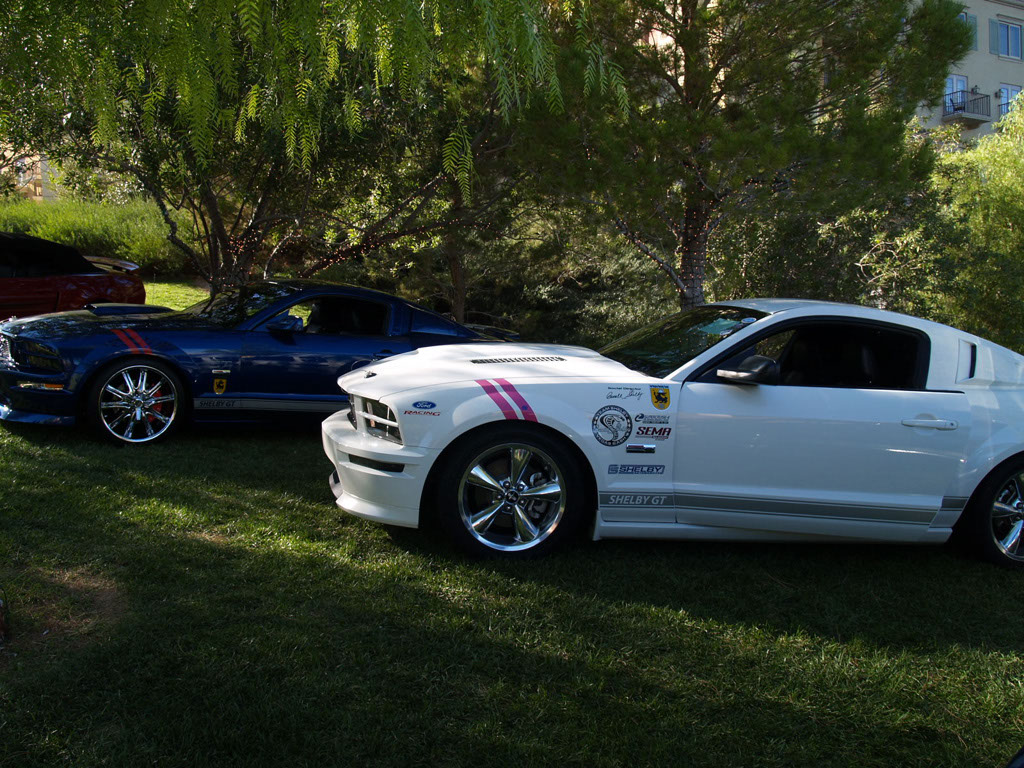 Mustangs at Lake Las Vegas Car Show 2011