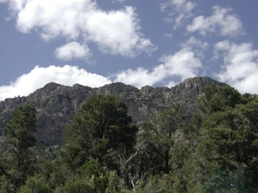 Mount Charleston 17