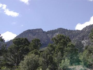 Mount Charleston 21