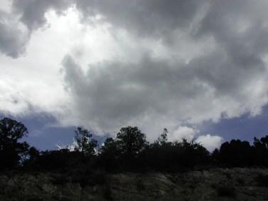 Mount Charleston 8