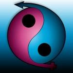Yin Yang Logo Concept