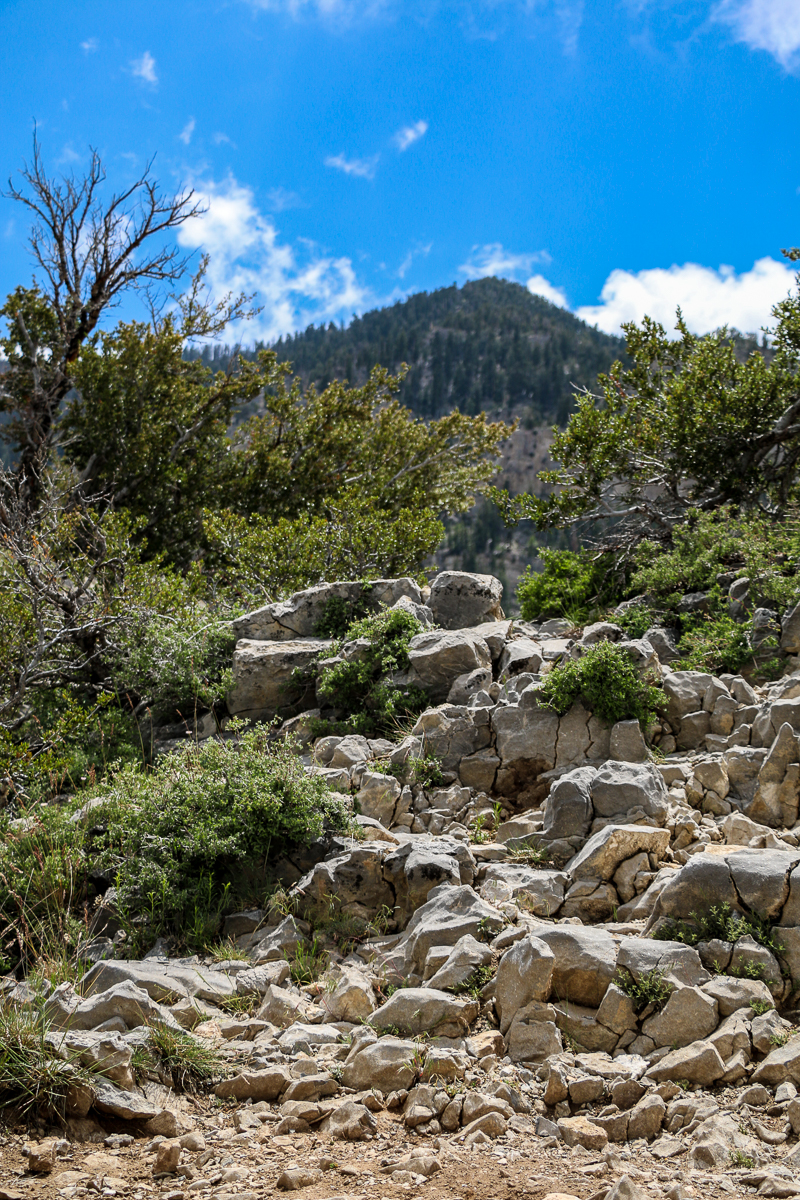 Cathedral Rock at Mount Charleston