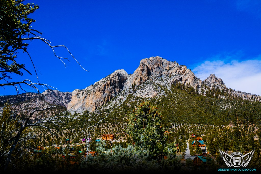 Mount Charleston Photography