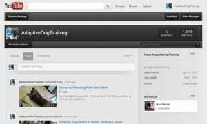 Adaptive Dog Training YouTube Channel