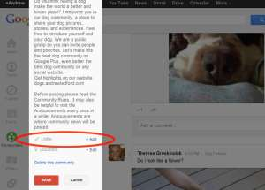 Now You Can Link To A Website On Your G+ Community