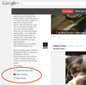 This Is What Your G+ Community Links Will Look Like