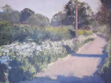 Lane Near Cuckfield