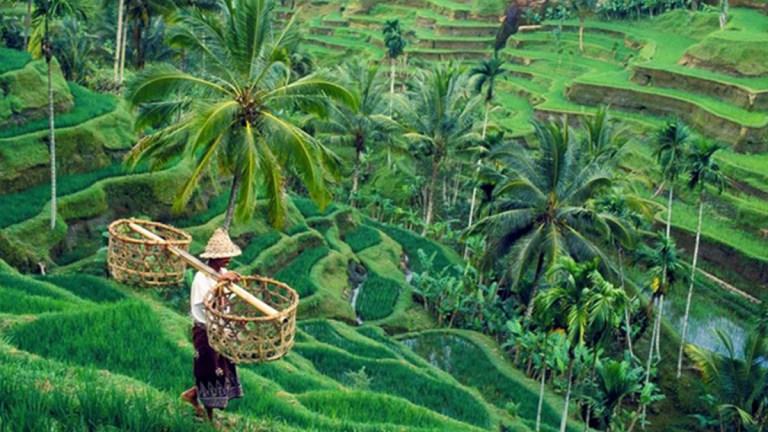 Percutian Di Bali Part IV