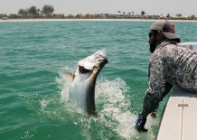 Captain Daniel Andrews Fishing Charters